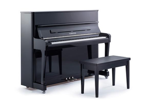 雅马哈钢琴RADIUS121EX 宽 152cm 深 61cm 高 121cm 重量 235.8kg 雅马哈RADIUS,现代魅力与百年木工技艺的完美融合。 洗练优雅的柔和线条,都会风尚的S形流线设计,云杉实木整音板, 历久弥新的世界品质,成欧洲新典范。 一款当代表现艺术与造型艺术高品质演绎的优美乐器, 宛若一件艺术臻品。 世界基准的音质,始终如一,雅马哈RADIUS载誉首登中国。 为您创造全新的音乐空间。 相较与Radius,Radius 121EX 具有更强的现代感。 通过突出钢琴表面曲线的合理运用