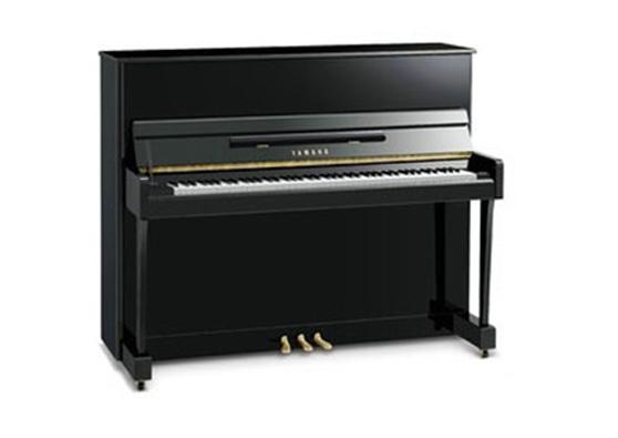 宽 约152cm 深 约61cm 高 约123cm 重量 约235kg 雅马哈致力于为喜爱音乐的人献上高品质的钢琴。 YS系列秉承雅马哈100余年的制造技艺,造就完美音色,最佳触感,洗炼铅华,专注钢琴最优质的卓越性能。 雅马哈钢琴YS系列是经久时尚的世界品质,谁都可以轻松拥有。 来吧,未来的音乐家,在未来的世界舞台,一定有你的音乐梦想。  YS系列特色:  外观: 键盘配置摆杆式缓降系统 引入优美的弧形曲线,体现了凝练时尚的外观特征 琴手正面引入弧形曲线设计 琴腿前侧引入弧形曲线设计  内装: 铝合金支架